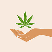 Hand holding marijuana leaf. Medical concept. Cannabis legalization. Icon product label and logo graphic template. Isolated vector illustration.