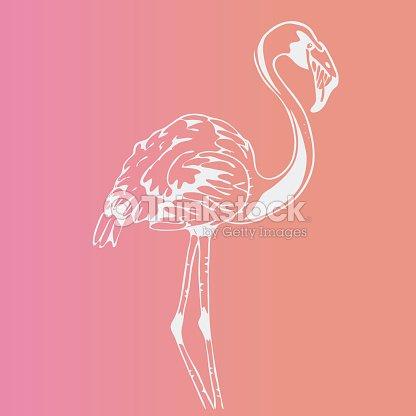 Gráficos Dibujados A Mano Lápiz Pájaro Flamenco Grabado Stencil ...