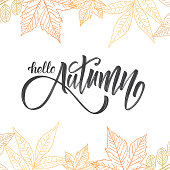 Vector illustration: Handwritten brush lettering of Hello Autumn on hand drawn leaves background. Outline sketch design