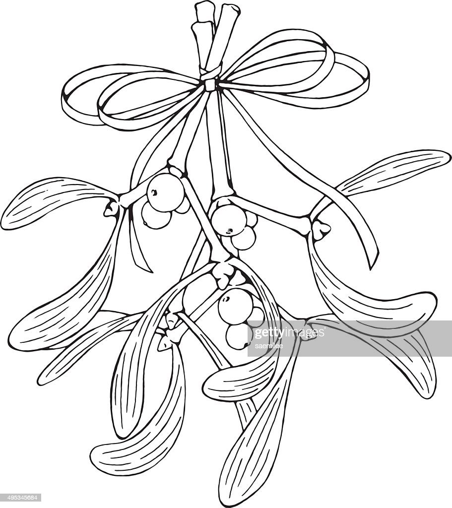 hanging mistletoe vector art getty images