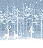 Vector illustration of a Christmas landscapes. Happy Christmas greeting card