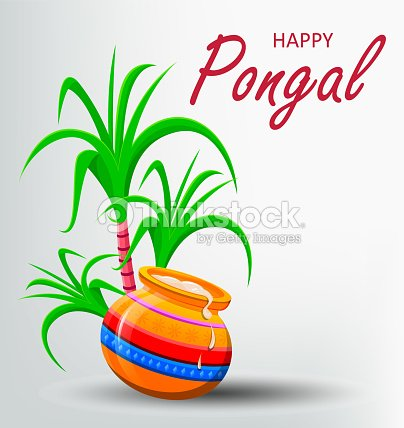Happy pongal greeting card on white background vector art thinkstock happy pongal greeting card on white background vector art m4hsunfo