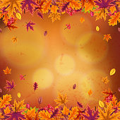 Happy Thanksgiving background with stylized autumn leaves of different trees, rosehip branches and rowan berries. Vector eps10 illustration.