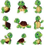vector illustration of Happy turtle cartoon collection set