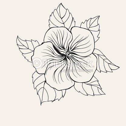 Coloriage Fleur Hawai.Hawai Fleur Dhibiscus Feuille Pour La Page De Livre De Coloriage