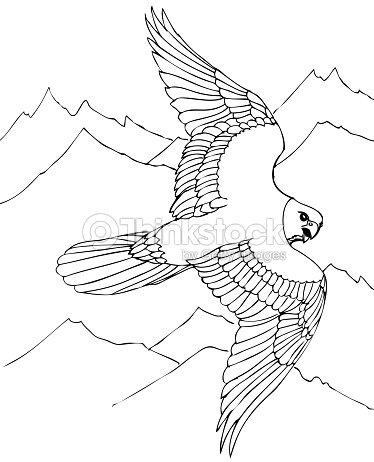 Halcón Vuela Sobre Montañas Rocosas Arte vectorial | Thinkstock