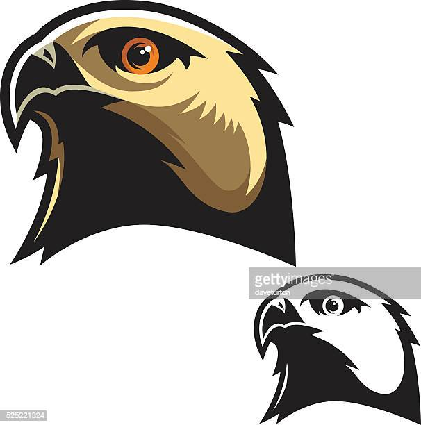 Bird Of Prey Stock Illustrations and Cartoons | Getty Images