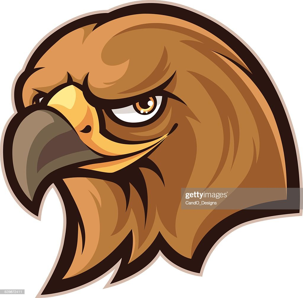 Hawk Head Vector Art | Getty Images