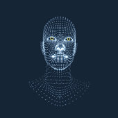 Head of the Person from a 3d Grid. Face Scanning. View of Human Head. 3D Geometric Face Design. Geometry Man Portrait.
