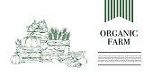 Healthy food, natural organic vegetables on a white background. Vegan market. Banner. Vector