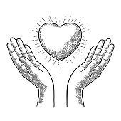 Heart with rays in open female human palms. Vector black vintage engraving illustration isolated on a white background. For web, poster, info graphic.
