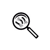 Helicobacter pylori bacteria test symbol. Magnifying glass with bacteria under. Simple black icon.
