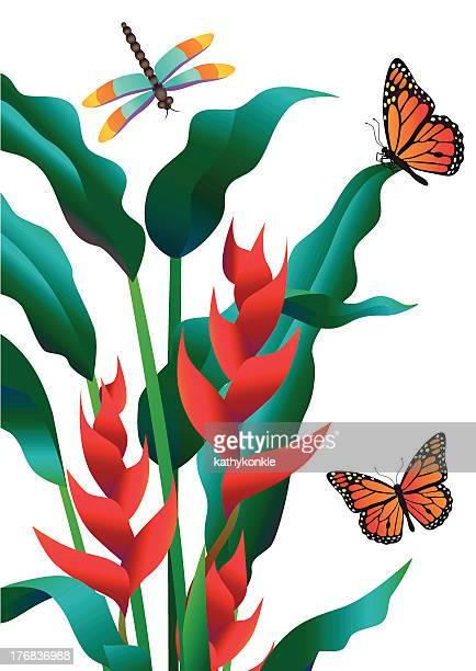 heliconia und monarch Schmetterlinge