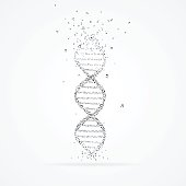Vector of DNA helix made from tunes isolated on white with shadow.