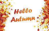 Hello autumn background with golden maple and oak leaves. Vector illustration.