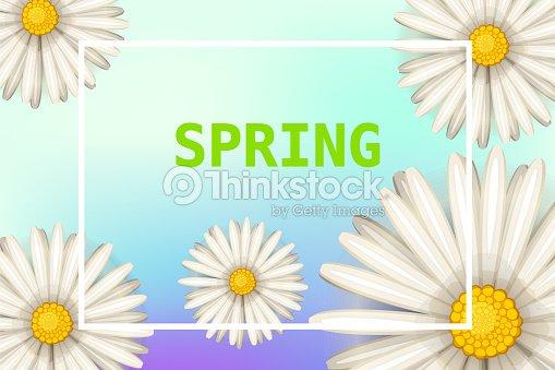 Hola Primavera Margaritas Flores Fondo Estilo De Dibujos Animados