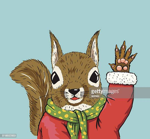 squirrel stock illustrations and cartoons getty images