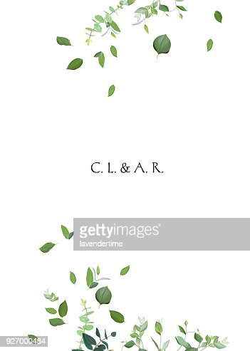 Herbal minimalistic vector frame : stock vector