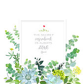 Herbal mix square vector frame box. Hand painted plants, branches, leaves, succulents and flowers on white background. Echeveria, eucalyptus,green hygrangea, brunia.Natural card.Isolated and editable.