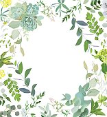 Herbal mix square vector frame. Hand painted plants, branches, leaves, succulents and flowers on white background. Echeveria, eucalyptus, green hygrangea, brunia. Natural card design.