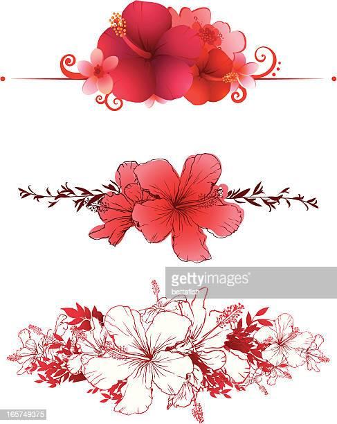 Hibiscus Banner