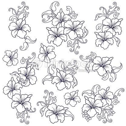 Illustration de la fleur dhibiscus clipart vectoriel - Dessin d hibiscus ...