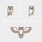 Owl linear logo/icon design ready to use in corporate identity