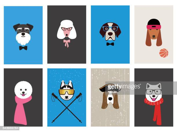 hipster, portrait of dog, gentlemen dog