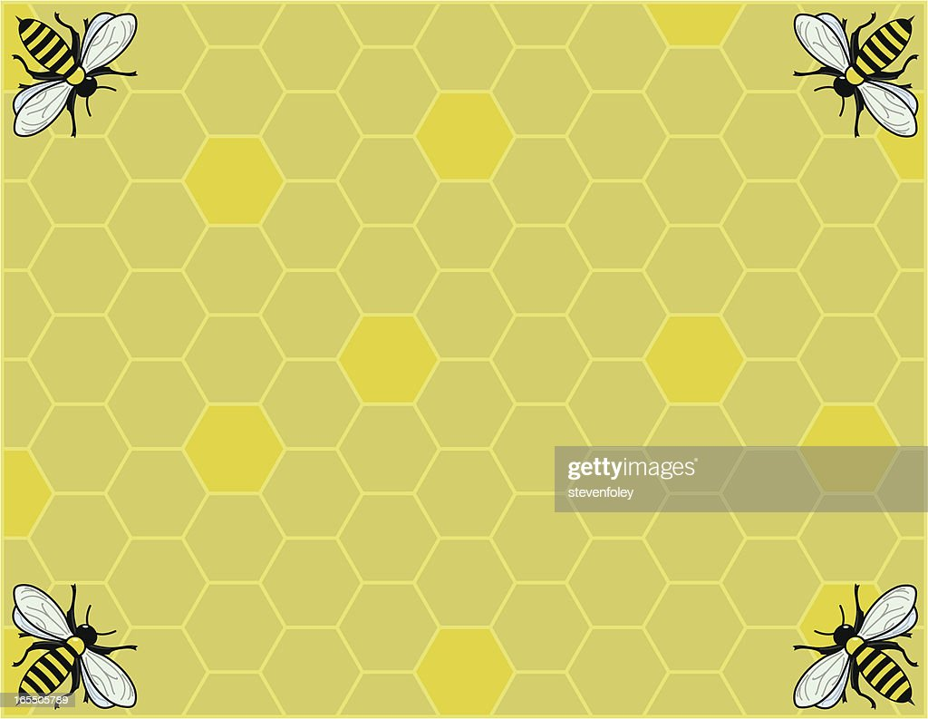 honeycomb vector art getty images