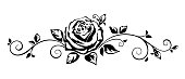 Vector horizontal black and white vignette with a rose.
