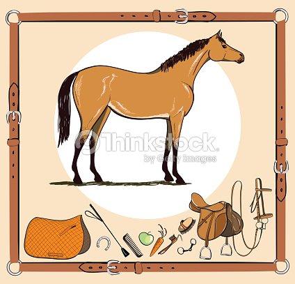 fbffc4514f68 Cheval et équitation amure outils dans le cadre de ceinture en cuir. Bride,  selle, étrier, brosse, bit, harnais, fournitures, appareils de harnais  équine de ...