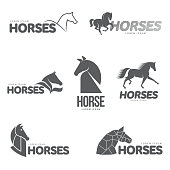 Horse profile graphic icon template, vector illustration on white background. Stylish horse head and body outline for stable, farm, race icon designHorse profile graphic template, vector illustration