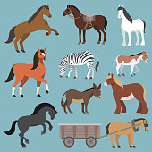 Horse vector animal of horse-breeding or equestrian and horsey or equine stallion illustration animalistic horsy set of pony zebra and donkey character isolated on background.