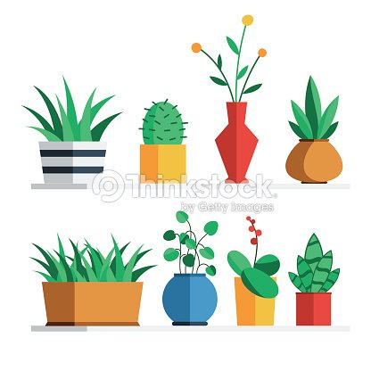 House plants and flowers : stock vector