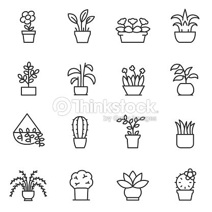 House plants icon set. Flower in pot. Line with editable stroke : stock vector
