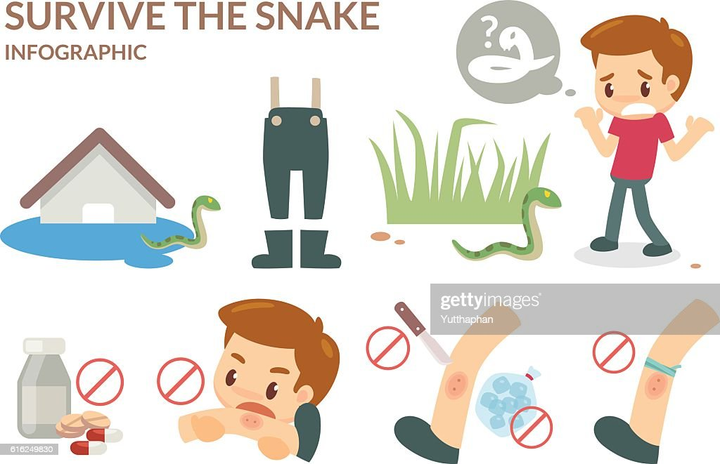 How to survive the snake. : Vector Art