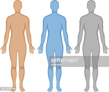 Human body outline in three colors : stock vector