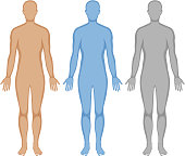 Human body outline in three colors illustration