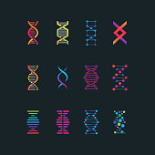 Human dna research technology symbols. Spiral molecule medical bio tech vector icons. Research chemistry and medicine, helix genetic genome illustration