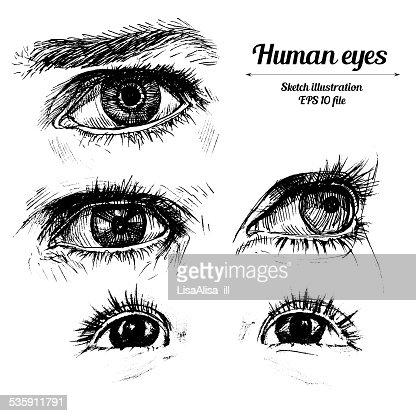 Humana mão desenho ilustração : Arte vetorial