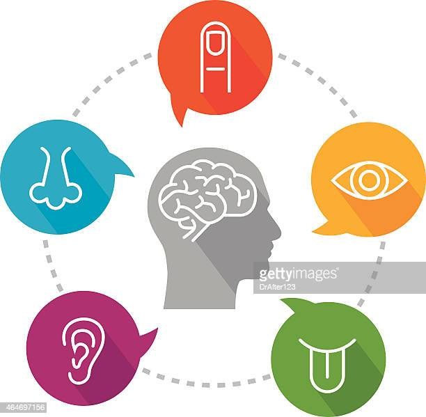sensory perception Further reading on child behavior and sensory processing resources for parents, teachers, and therapists to share with their clients/parents.