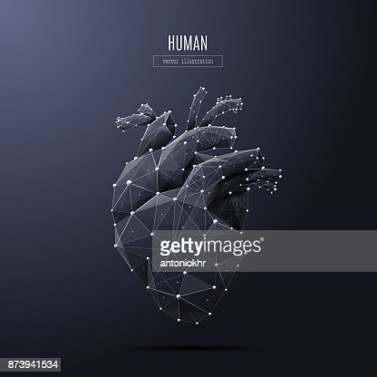 human heart low poly white : Vector Art
