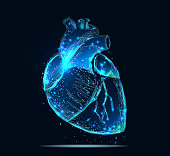 Vector isolated heart. Low poly wireframe and points. Polygonal 3D human organ on dark blue background. Medicine concept with geometry triangle. Abstract heart pain mash line origami