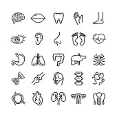 Human Organs Black Thin Line Icon Set Include of Stomach, Heart, Liver, Kidney and Eye. Vector illustration of Organ