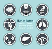 Human Systems Icon . ( Neurological . Musculoskeleton . Gastrointestinal . Cardiovascular . Respiratory . Genitourinary . Hepatobiliary . Gynecological ) .