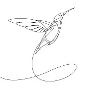 Check out this single continuous line vector illustration that forms the shape of a flying humming bird
