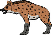 hyena, illustration of wildlife, zoo, wildlife, animal of savannah, Africa, safari, predator