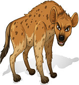 Illustration of a close up hyenas