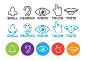 Icon human senses: vision, smell, hearing, touch, taste. Icons sense nose, ear, eye, hand vector