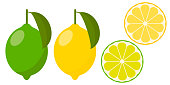 icon set lemon and lime, vector illustration on white background. whole fruit and cut into pieces. citrus.